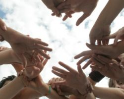 Nuevos contenidos en la Red de escuelas y organizaciones para una Cultura de Paz